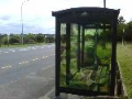 thumb 2-north-shore-bus-stops
